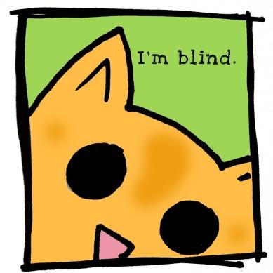 I'm blind.